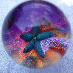 starfish marble glass art by Marco Jerman
